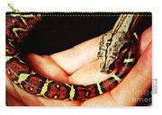 Red Tail Baby Boa - Snake - Pet Carry-all Pouch