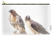 Red Tail Hawk Pair On White Background Carry-all Pouch