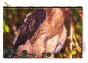 Red Tailed Hawk - 53 Carry-all Pouch