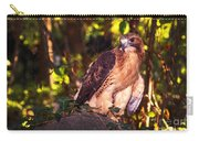 Red Tailed Hawk - 54 Carry-all Pouch