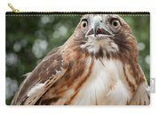 Red-tailed Hawk Square Carry-all Pouch by Bill Wakeley