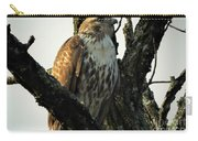 Red Tailed Morning Carry-all Pouch
