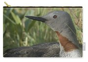Red-throated Loon With Day Old Chicks Carry-all Pouch by Michael Quinton