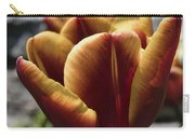 Red Tulip  2116 Carry-all Pouch