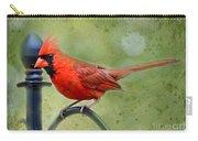 Redbird Alert Carry-all Pouch