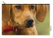 Redbone Coonhound - Man's Best Friend The Hound Dog Carry-all Pouch