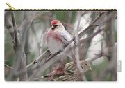 Redpoll And Pine Siskin Carry-all Pouch