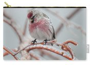 Redpoll Shy Pose Carry-all Pouch