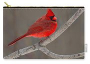 Reds Carry-all Pouch