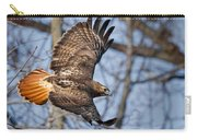 Redtail Hawk Carry-all Pouch