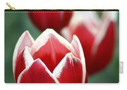Redwhitetulips6838-1 Carry-all Pouch