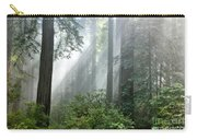 Redwood Forest With Sunbeams Carry-all Pouch