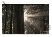 Redwoods First Light Carry-all Pouch