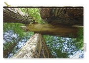Redwoods Forest Art Prints Canvas Framed Redwood Trees Carry-all Pouch