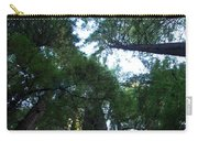 Redwoods II Carry-all Pouch