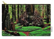 Redwoods Wonderland Carry-all Pouch by Benjamin Yeager