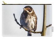 Reed Bunting Emberiza Schoeniclus Carry-all Pouch