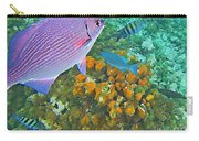 Reef Life Carry-all Pouch by John Malone
