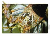 Reef Lobster Close Up Spotlight Carry-all Pouch