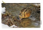 Reflected Eye Woodcock Carry-all Pouch