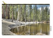 reflecting pond 2 Carson Spur Carry-all Pouch
