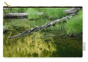 Reflecting Pond Glacier National Park Painted Carry-all Pouch