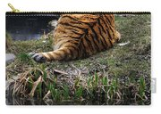 Reflecting Stripes Carry-all Pouch
