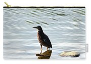 Reflection Of The Green Heron Carry-all Pouch