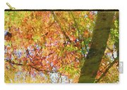 Reflections Of A Colorful Fall 001 Carry-all Pouch