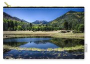 Reflections Of Blue  Carry-all Pouch