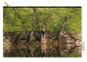 Reflections Of The Past Carry-all Pouch
