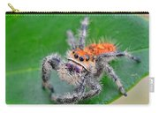 Regal Jumping Spider Carry-all Pouch