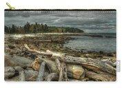 Reid Beach Carry-all Pouch