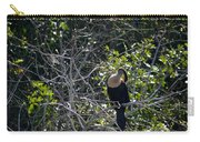 Resting  Anhinga Carry-all Pouch