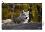 Resting Arctic Wolf On Rocks Carry-all Pouch