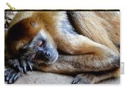 Resting Comfortably Carry-all Pouch