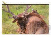 Resting Elk Carry-all Pouch