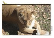 Resting Lioness Carry-all Pouch