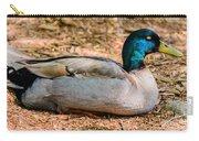 Resting Mallard Carry-all Pouch