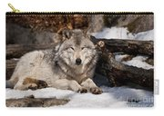 Resting Timber Wolf Carry-all Pouch
