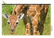 Reticulated Giraffe 6 Week Old Calf Carry-all Pouch