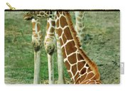 Reticulated Giraffe And Calf Carry-all Pouch