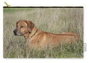 Rhodesian Ridgeback Dog Carry-all Pouch