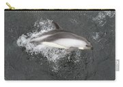 Riding The Bow Carry-all Pouch by Tony Beck
