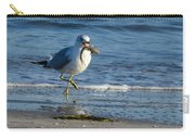 Ring-billed Gull With Its Catch Carry-all Pouch