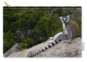Ring-tailed Lemur Resting Madagascar Carry-all Pouch