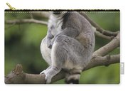 Ring-tailed Lemur Sitting Madagascar Carry-all Pouch