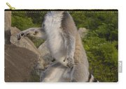 Ring-tailed Lemur Standing Madagascar Carry-all Pouch