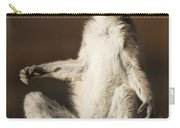 Ring-tailed Lemur Sunning Berenty Carry-all Pouch