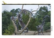 Ring Tailed Lemurs Playing Carry-all Pouch
